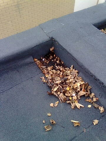 Flat roofs: Common problems and solutions – The Helpful Engineer