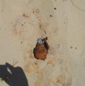 Rusty grenade in sand