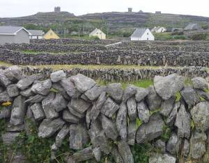 Irish dry stone walls. More walls.