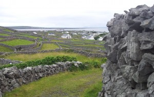Inisheer. Loads of dry stone walls.