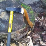 Using a maul to split wood